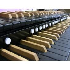 Ebony Wood-Core Classic Pro Keyboard With 20 Pistons
